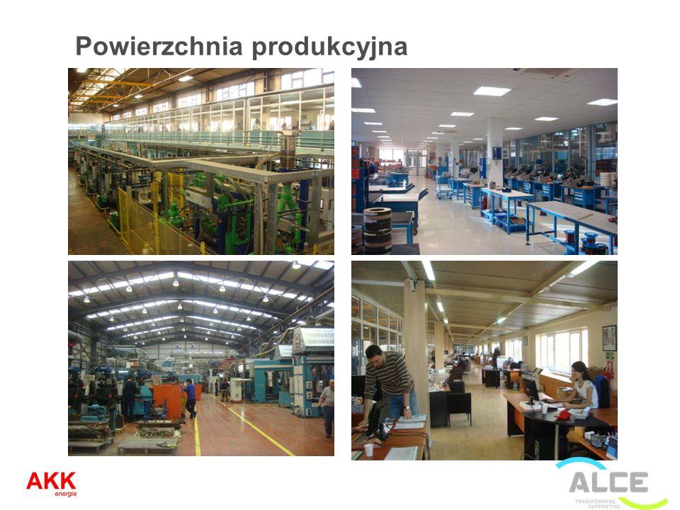 Powierzchnia produkcyjna