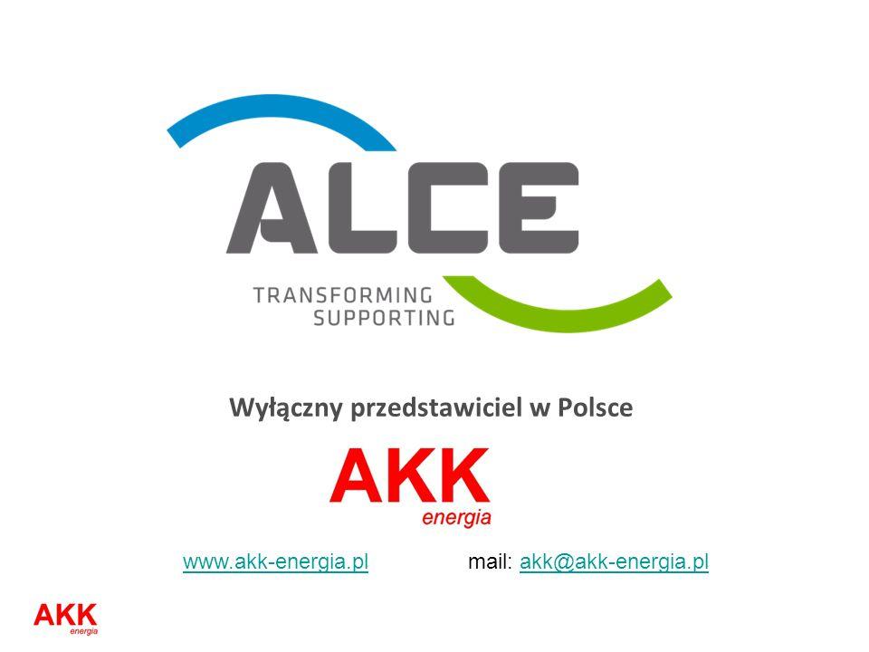 Wyłączny przedstawiciel w Polsce