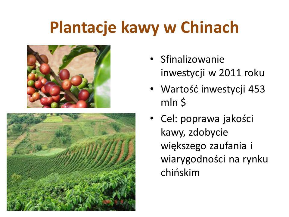 Plantacje kawy w Chinach