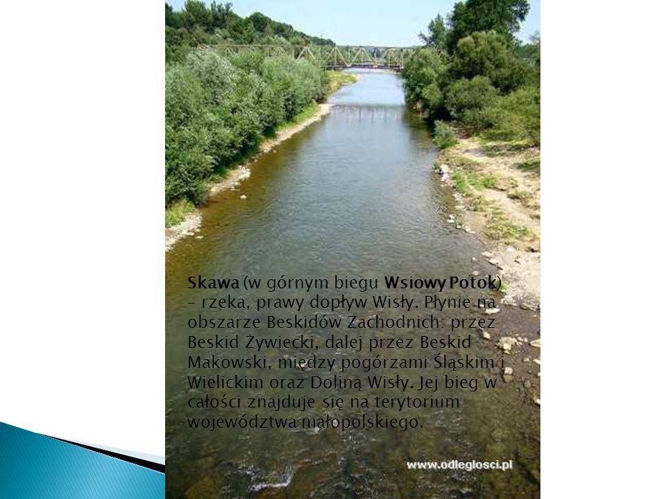 Skawa (w górnym biegu Wsiowy Potok) – rzeka, prawy dopływ Wisły