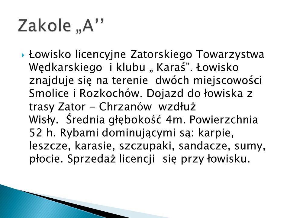 "Zakole ""A''"