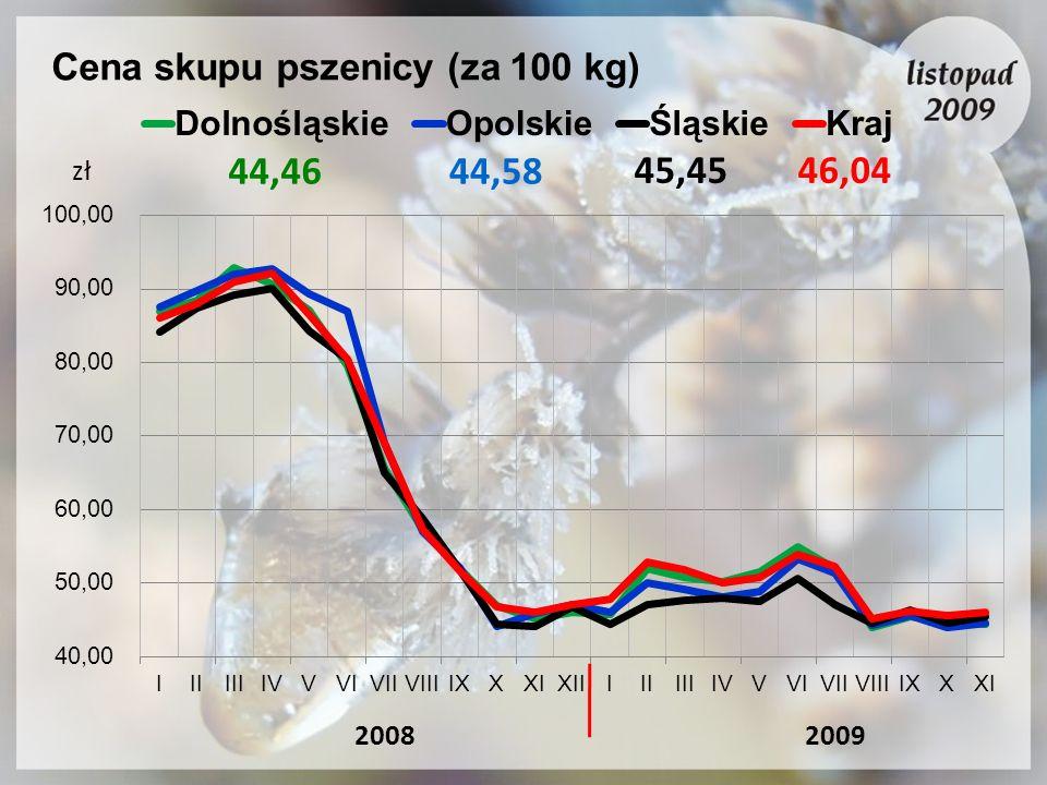 Cena skupu pszenicy (za 100 kg)