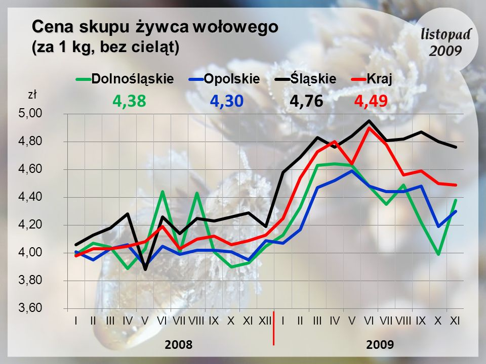 Cena skupu żywca wołowego (za 1 kg, bez cieląt)