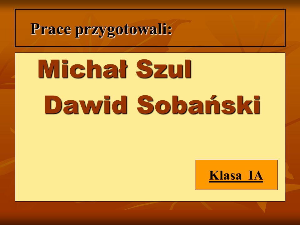 Prace przygotowali: Michał Szul Dawid Sobański Klasa IA