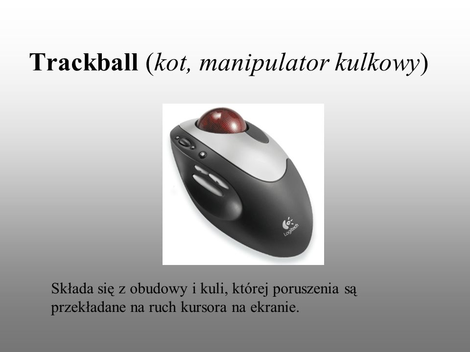 Trackball (kot, manipulator kulkowy)