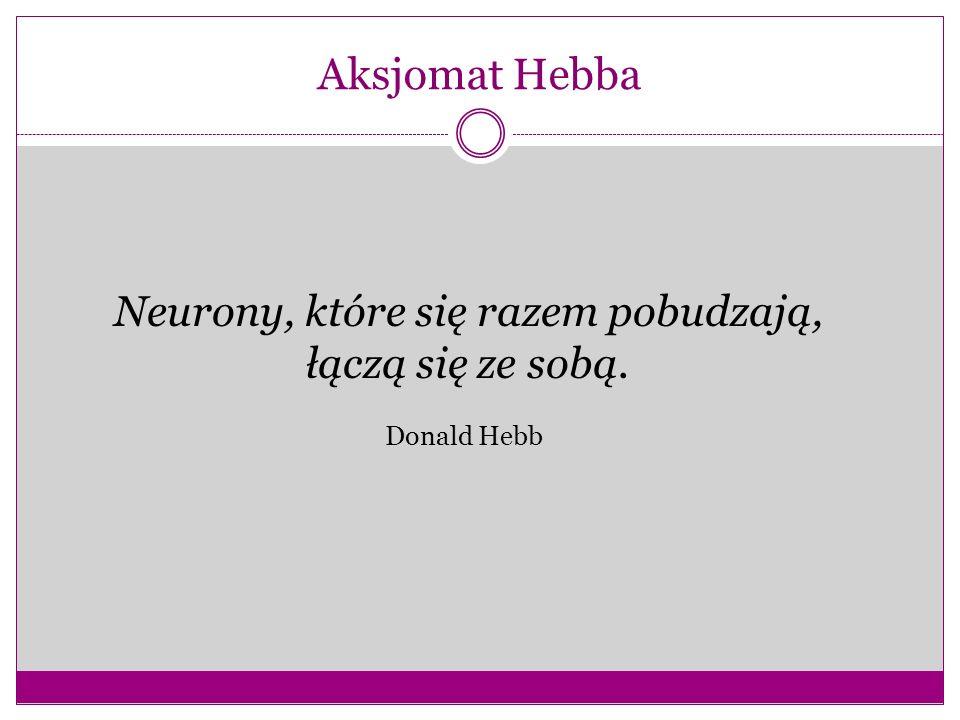 Neurony, które się razem pobudzają,
