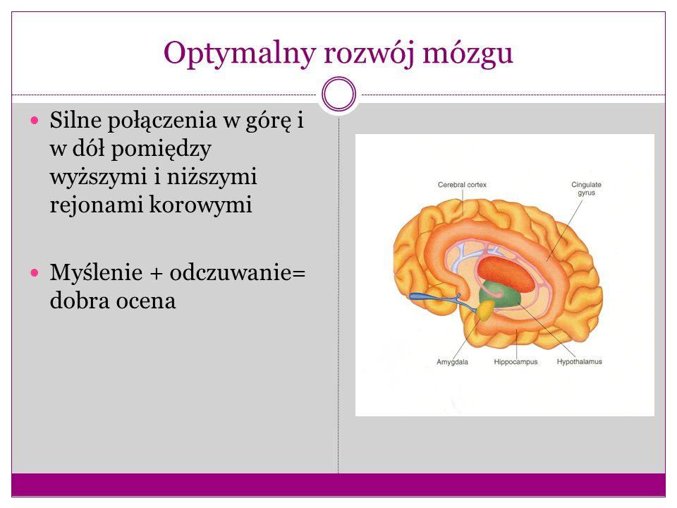 Optymalny rozwój mózgu
