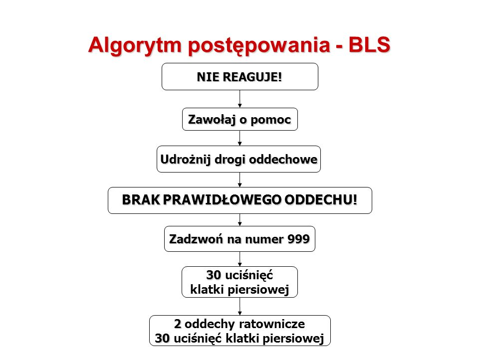 Algorytm postępowania - BLS