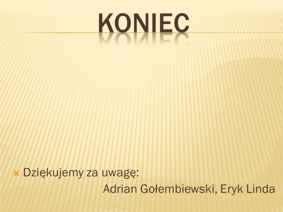 KONIEC Dziękujemy za uwagę: Adrian Gołembiewski, Eryk Linda