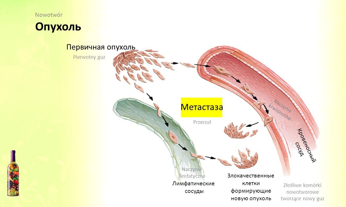Злокачественные клетки формирующие новую опухоль