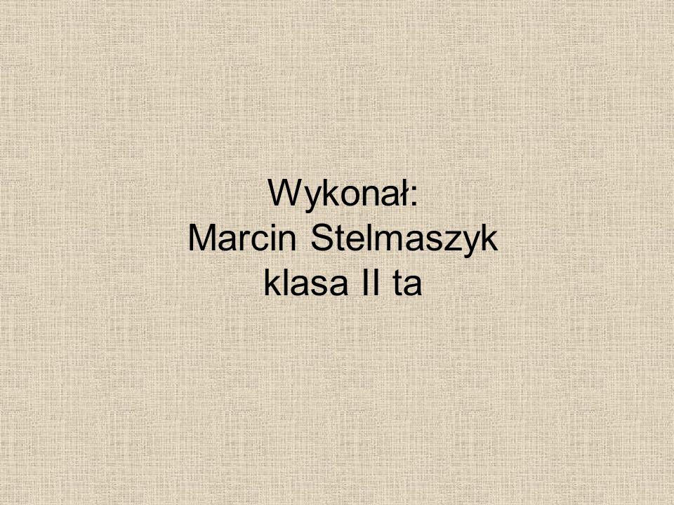 Wykonał: Marcin Stelmaszyk klasa II ta