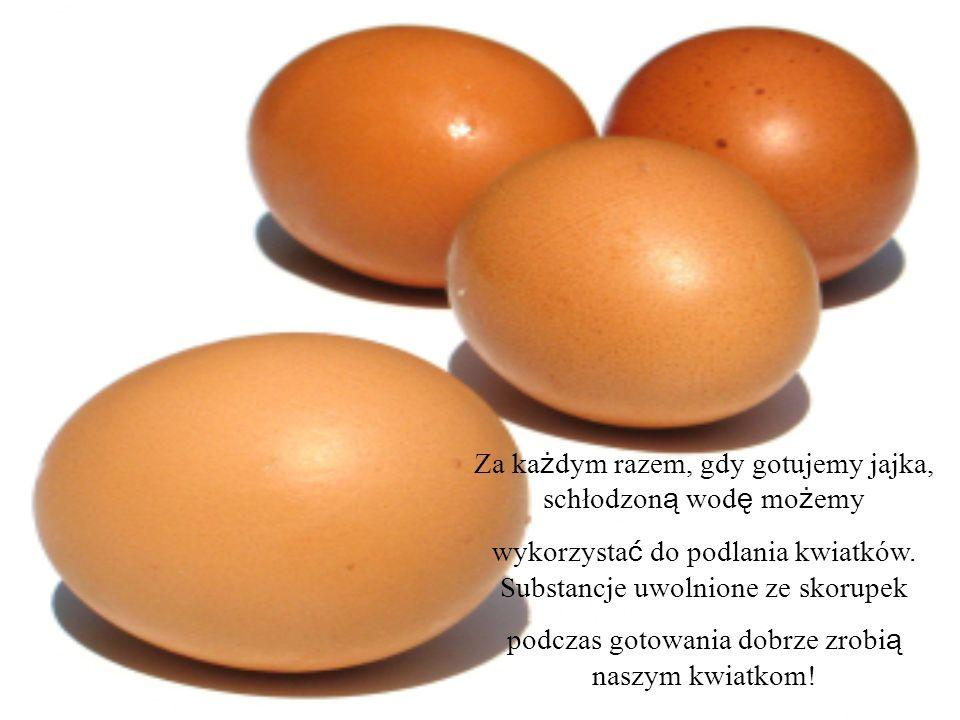 Za każdym razem, gdy gotujemy jajka, schłodzoną wodę możemy