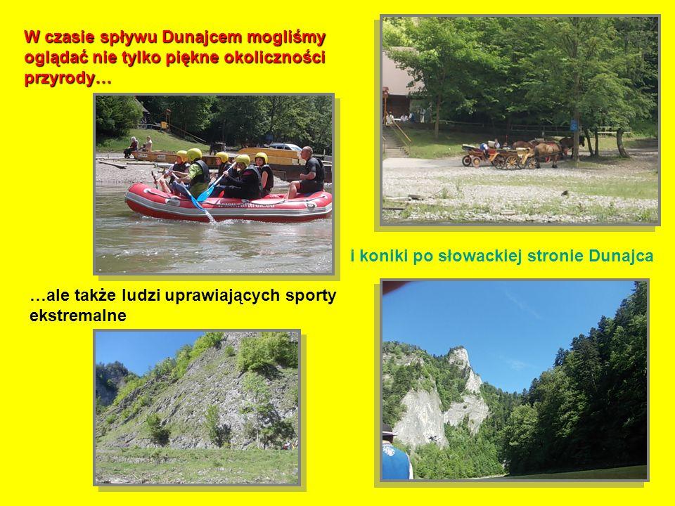 W czasie spływu Dunajcem mogliśmy oglądać nie tylko piękne okoliczności przyrody…