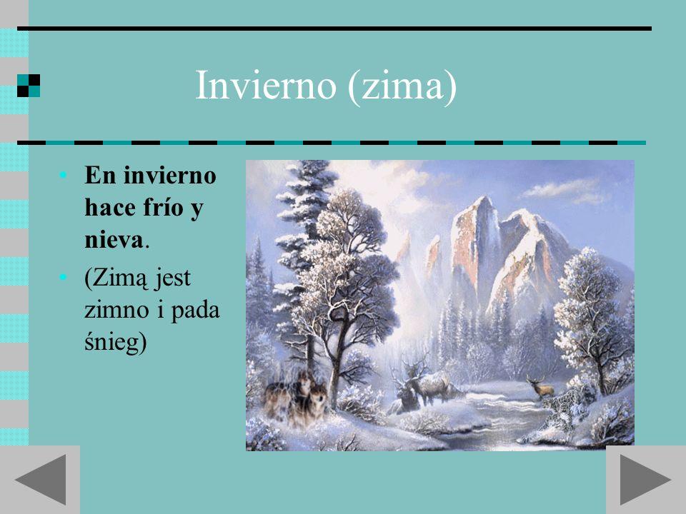 Invierno (zima) En invierno hace frío y nieva.