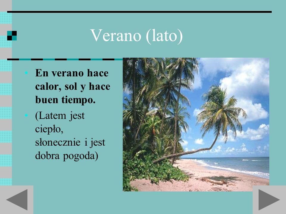 Verano (lato) En verano hace calor, sol y hace buen tiempo.