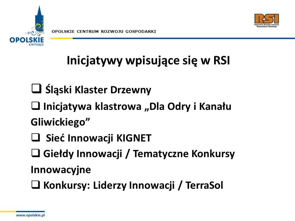 Inicjatywy wpisujące się w RSI