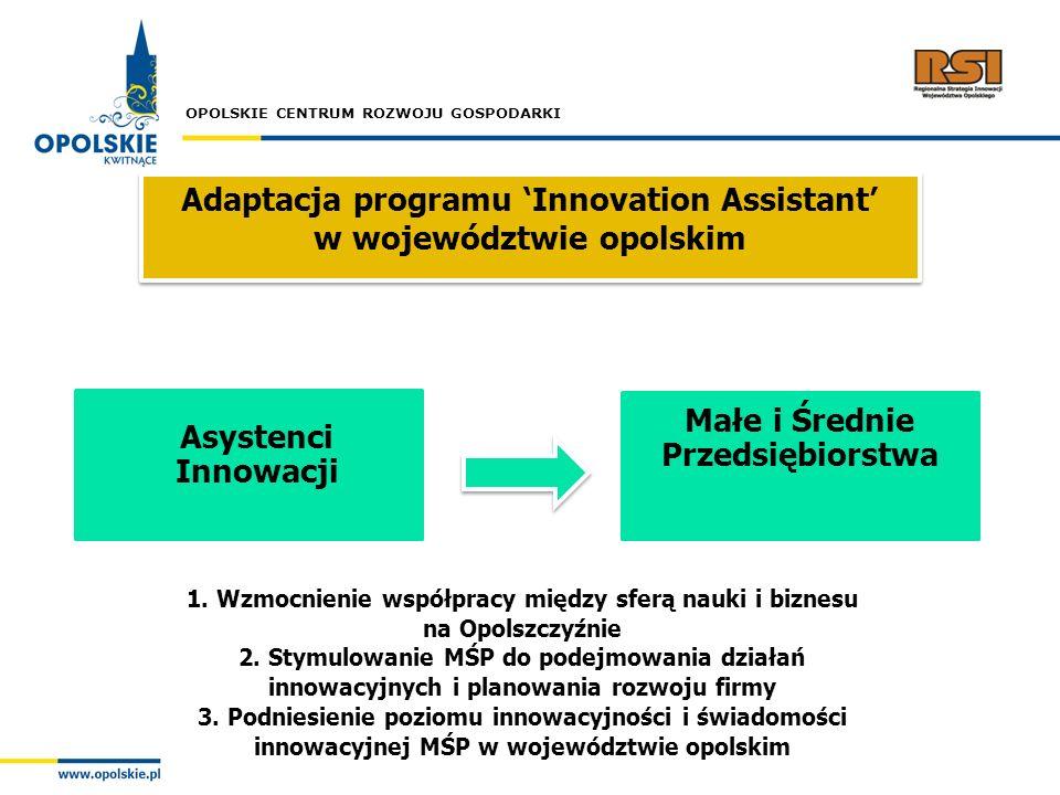 Adaptacja programu 'Innovation Assistant' w województwie opolskim