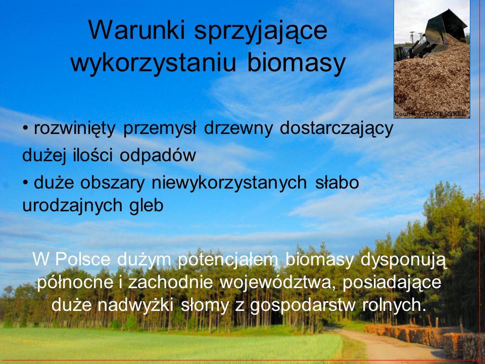 Warunki sprzyjające wykorzystaniu biomasy