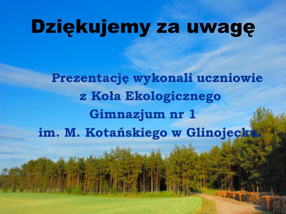 im. M. Kotańskiego w Glinojecku.