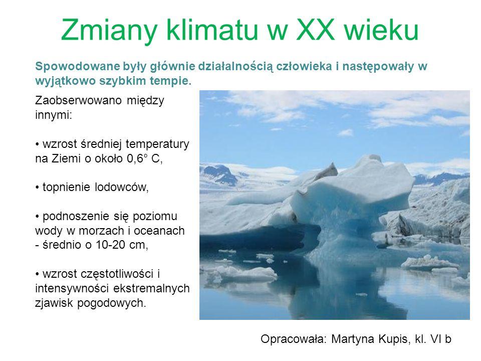 Zmiany klimatu w XX wieku