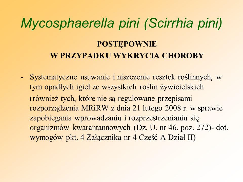Mycosphaerella pini (Scirrhia pini)