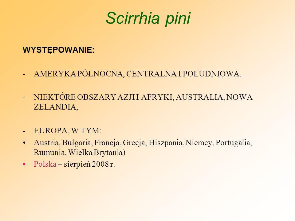 Scirrhia pini WYSTĘPOWANIE: AMERYKA PÓŁNOCNA, CENTRALNA I POŁUDNIOWA,