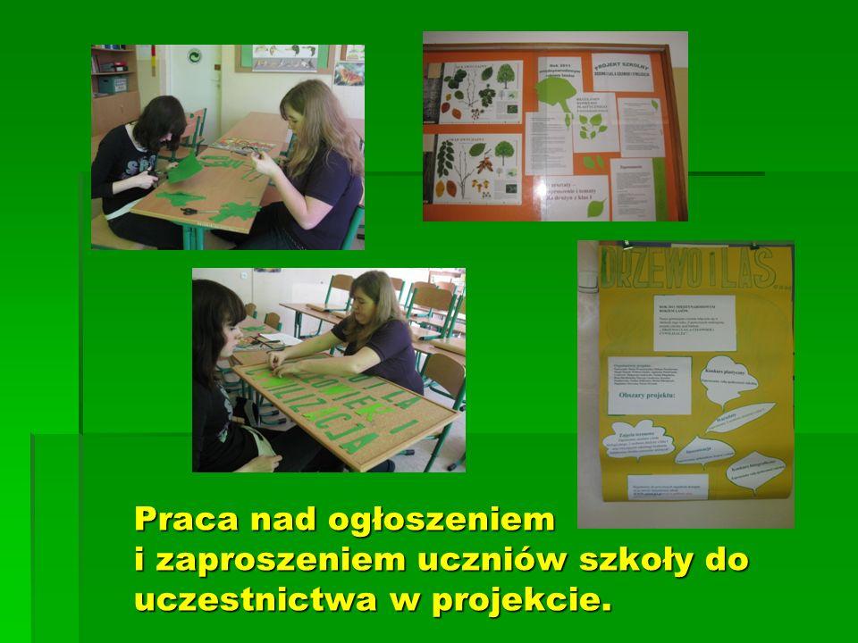 Praca nad ogłoszeniem i zaproszeniem uczniów szkoły do uczestnictwa w projekcie.
