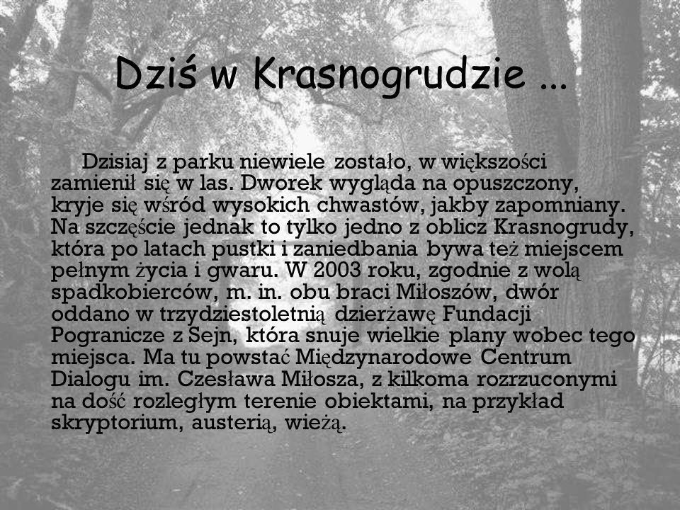 Dziś w Krasnogrudzie ...