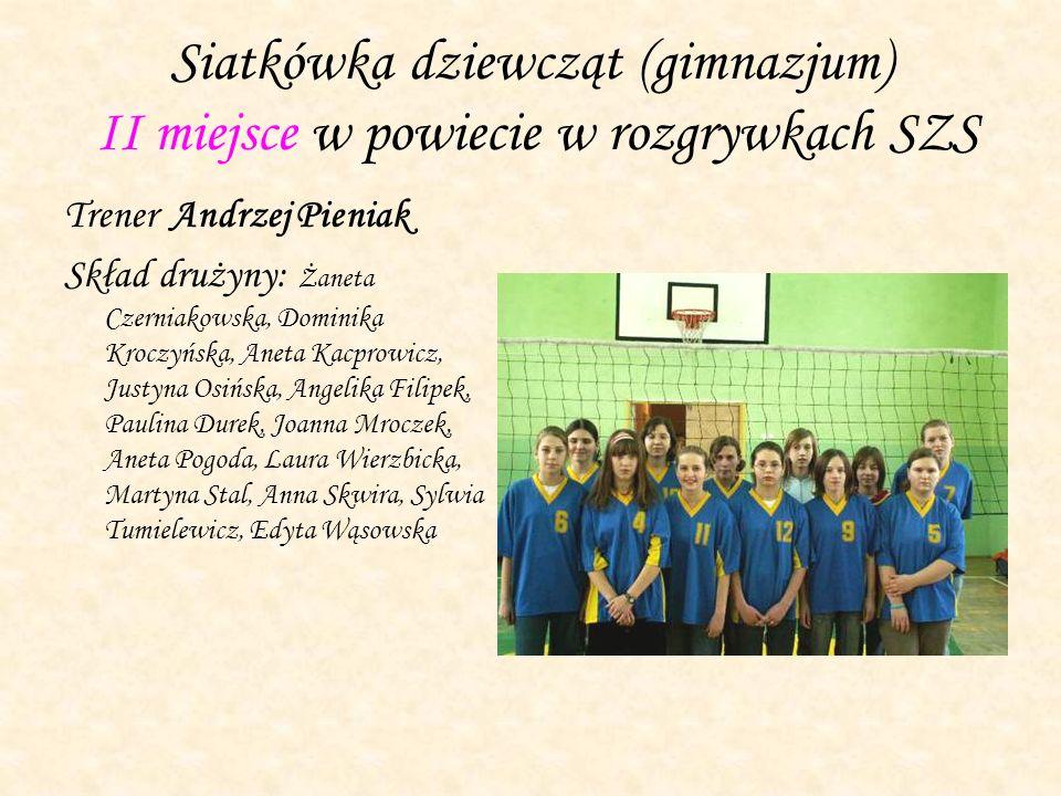 Siatkówka dziewcząt (gimnazjum) II miejsce w powiecie w rozgrywkach SZS