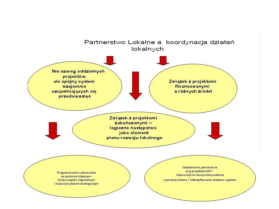 Uzasadnienie partnerstwa przy projektach EFS –