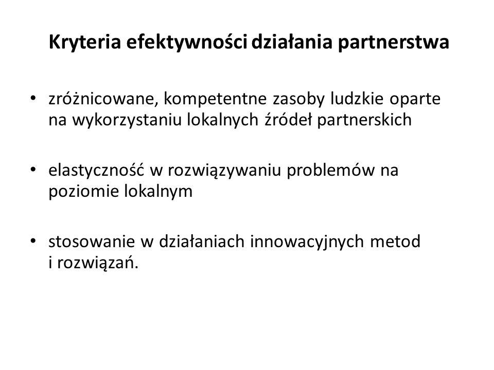 Kryteria efektywności działania partnerstwa