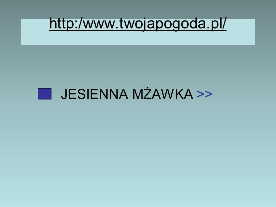 JESIENNA MŻAWKA >>