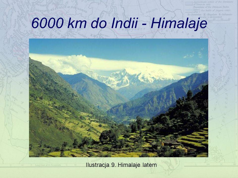 6000 km do Indii - Himalaje Ilustracja 9. Himalaje latem