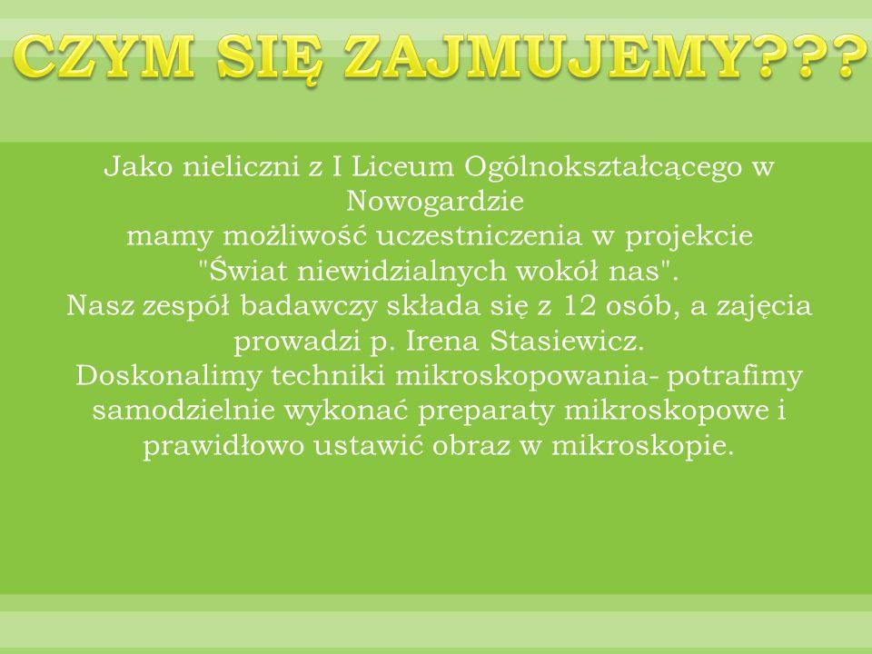 CZYM SIĘ ZAJMUJEMY Jako nieliczni z I Liceum Ogólnokształcącego w Nowogardzie mamy możliwość uczestniczenia w projekcie.