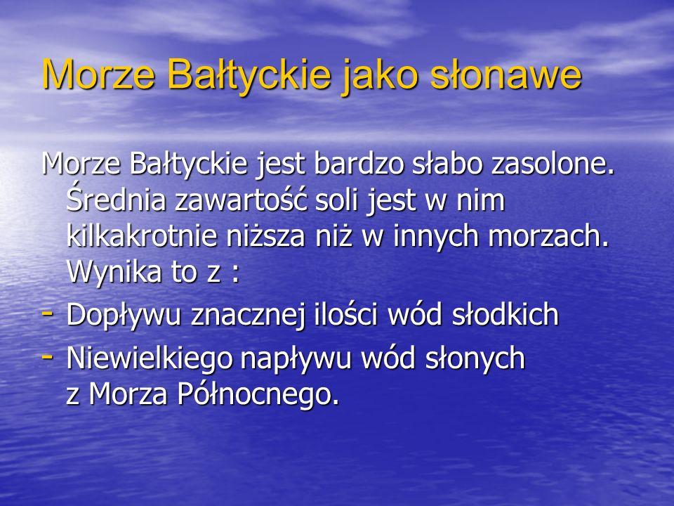 Morze Bałtyckie jako słonawe