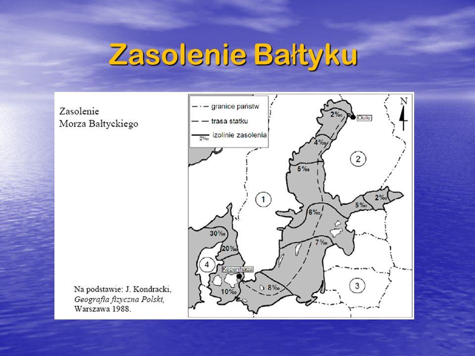 Zasolenie Bałtyku