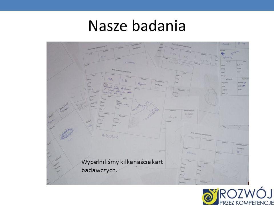 Nasze badania Wypełniliśmy kilkanaście kart badawczych.