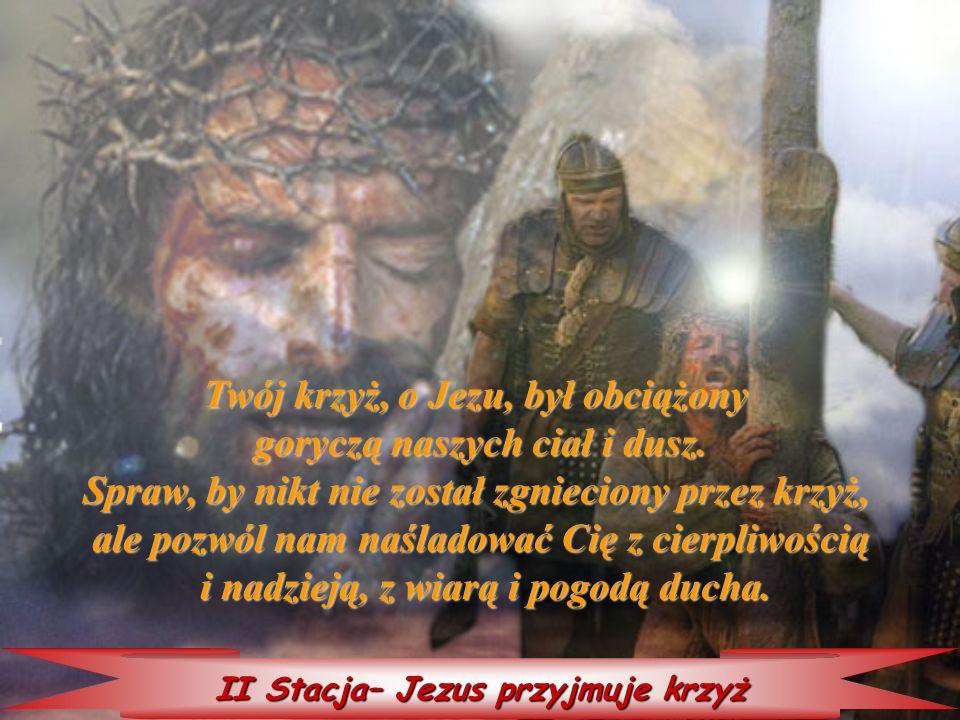 Twój krzyż, o Jezu, był obciążony goryczą naszych ciał i dusz.