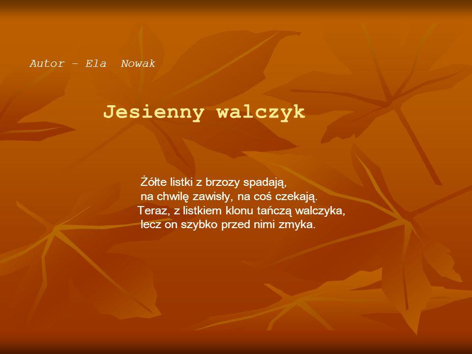 Autor - Ela Nowak Jesienny walczyk. Żółte listki z brzozy spadają, na chwilę zawisły, na coś czekają.