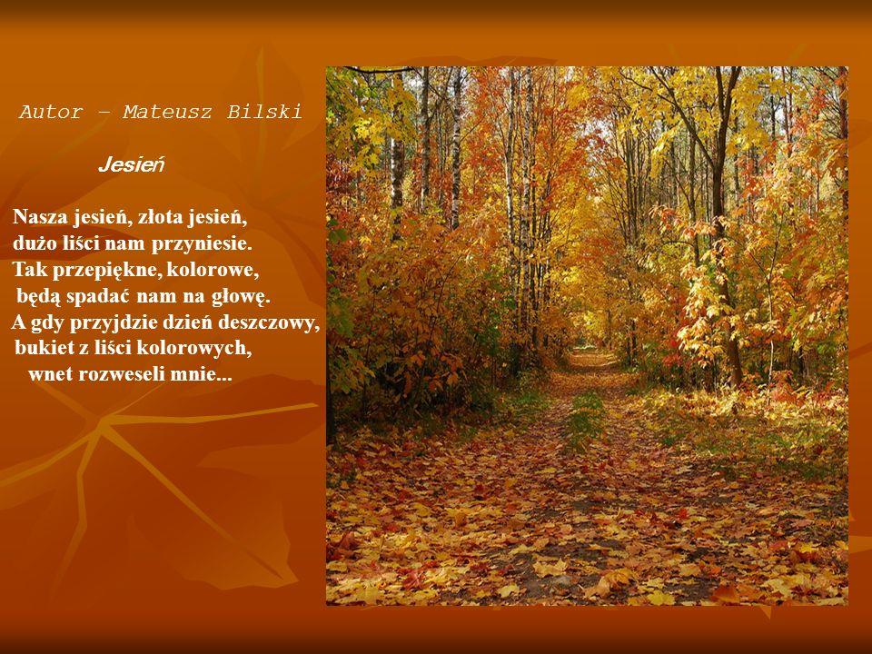 Nasza jesień, złota jesień, dużo liści nam przyniesie.
