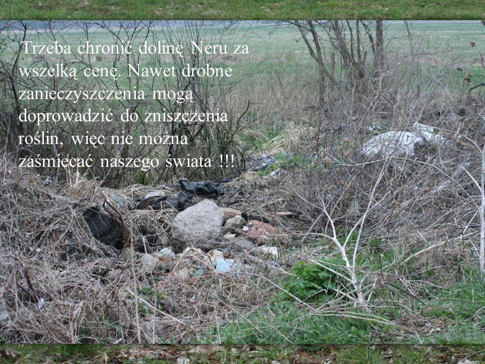 Trzeba chronić dolinę Neru za wszelką cenę