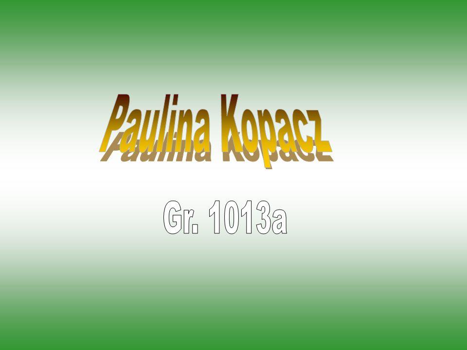 Paulina Kopacz Gr. 1013a