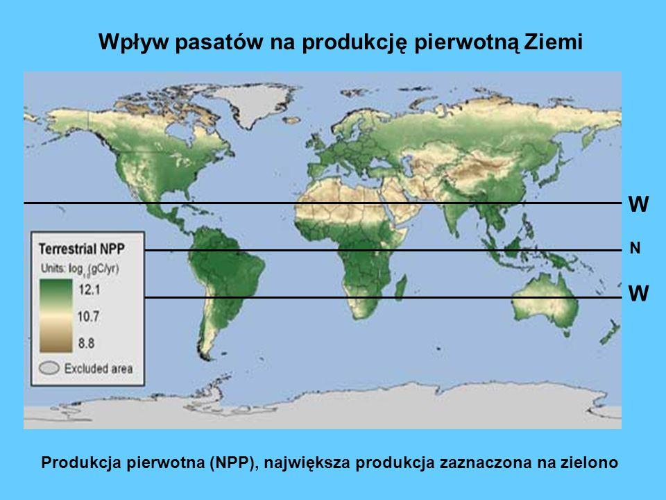 Wpływ pasatów na produkcję pierwotną Ziemi