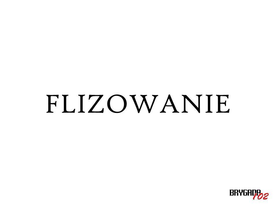 FLIZOWANIE