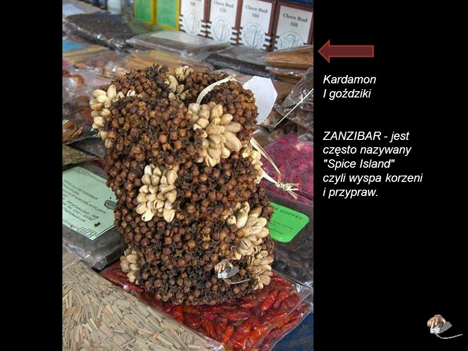 Kardamon I goździki ZANZIBAR - jest często nazywany Spice Island czyli wyspa korzeni i przypraw.