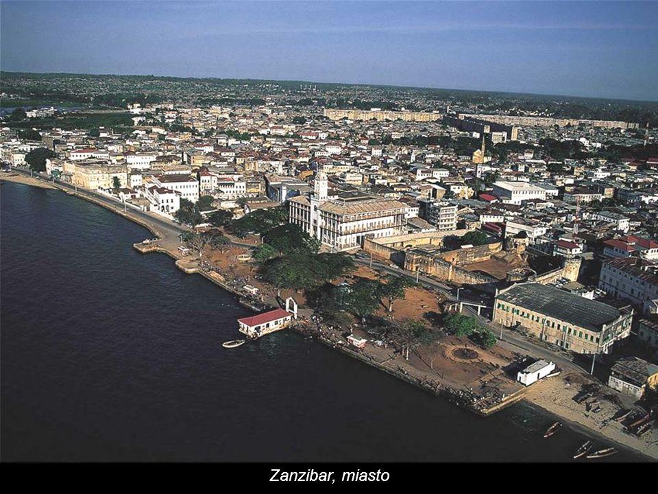 Zanzibar, miasto