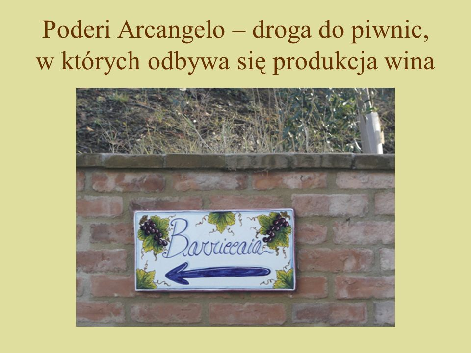 Poderi Arcangelo – droga do piwnic, w których odbywa się produkcja wina