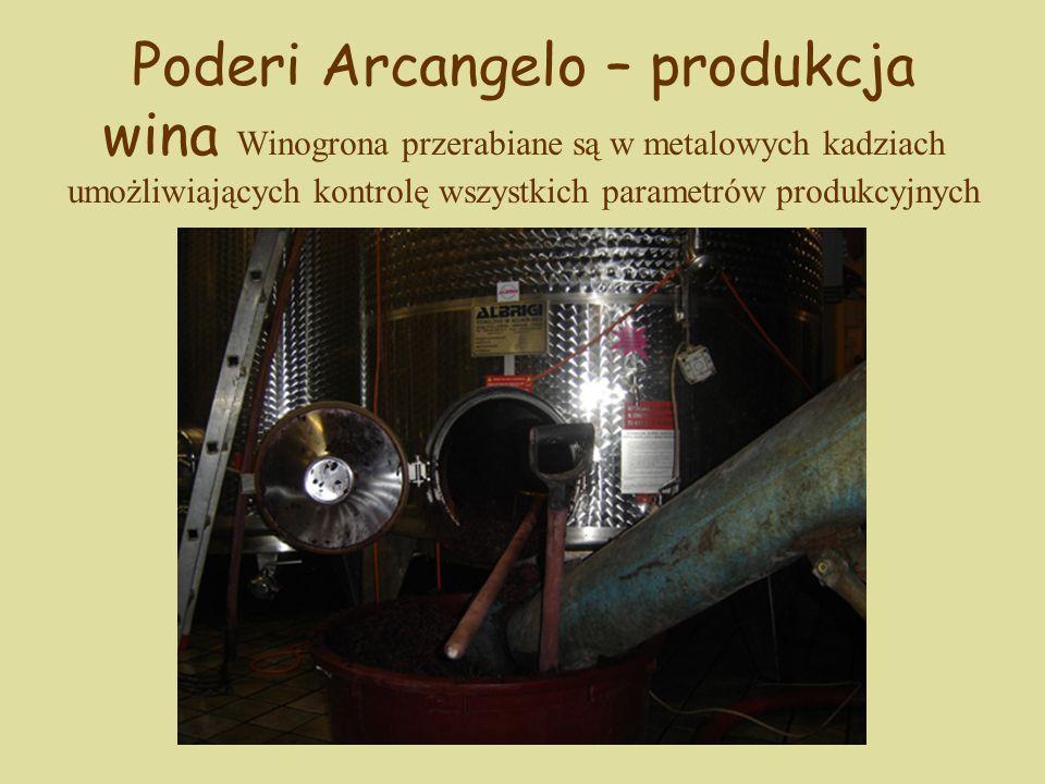 Poderi Arcangelo – produkcja wina Winogrona przerabiane są w metalowych kadziach umożliwiających kontrolę wszystkich parametrów produkcyjnych