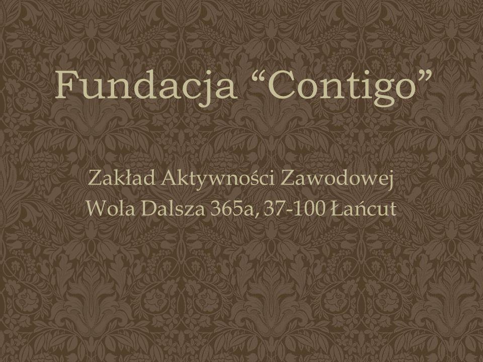 Zakład Aktywności Zawodowej Wola Dalsza 365a, 37-100 Łańcut