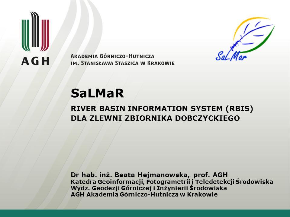 SaLMaR RIVER BASIN INFORMATION SYSTEM (RBIS) DLA ZLEWNI ZBIORNIKA DOBCZYCKIEGO.